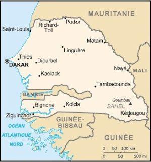 Vers des patrouilles conjointes Sénégal-Guinée-Bissau le long de la frontière entre les deux pays