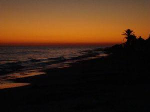 Tunisie: Programme de sensibilisation pour préserver la propreté des plages publiques