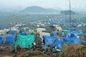 Journée mondiale des réfugiés : Un nouveau dispositif mis sur pied pour les aider