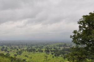 Togo : Des brigades villageoises de protection des végétaux pour accompagner la relance agricole
