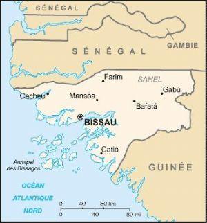 Présidentielle : La crise postélectorale s'installe en Guinée-Bissau (SYNTHESE)