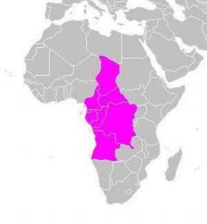 """Centrafrique : Les pays de la CEEAC réaffirment leur soutien pour un """"dialogue constructif"""" inclusif"""