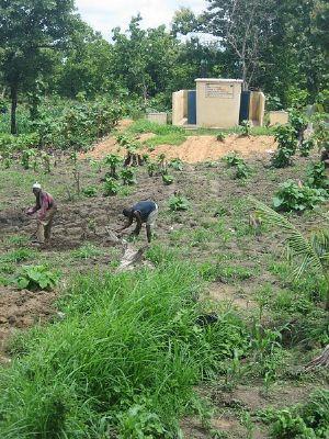 Il faut prendre en compte l'impact potentiel du changement climatique dans la production agricole