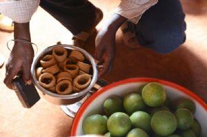 Le Bénin envisage d'augementer avant 2015 la production des cultures maraîchères