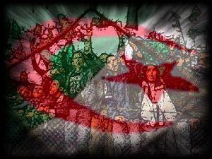 Le Conseil d'association UE-Algérie se penche sur la coopération économique et le dialogue politique