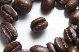 Vers l'expérimentation de la culture du café sous l'ombre au Burundi