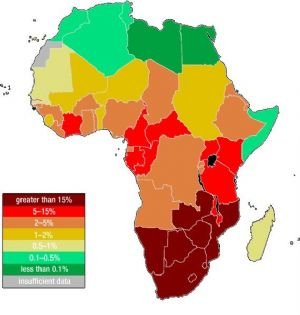 Botswana : Le taux de prévalence du VIH tombe à 1,35%