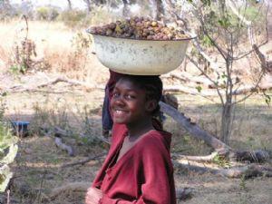 Le président botswanais réaffirme son engagement à éliminer la pauvreté absolue