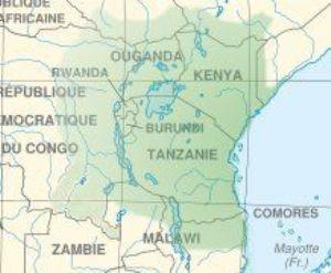 Afrique de l'Est : Des députés veulent faire du Swahili une langue officielle de l'EAC