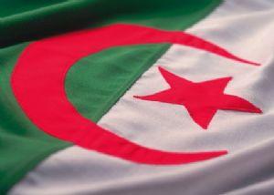 Mondial 2014/ L'Algérie a l'obligation de résultats après les piètres prestations des 4 autres équipes africaines