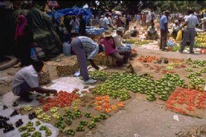 La Tanzanie verra son économie progresser de 7%