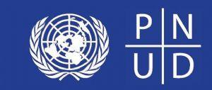 Afrique : Le PNUD lance un programme  pour éradiquer les fraudes fiscales sur le continent
