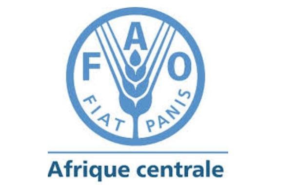 Agri: La FAO et le PRASAC s'allient pour de meilleures politiques agricoles en Afrique Centrale