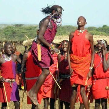 Kenya: des Jeux Olympiques Masaï pour stopper le massacre des Lions