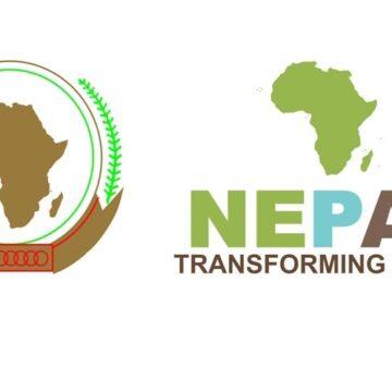 En marge du Sommet UA, le Nepad devient l'AUDA-NEPAD
