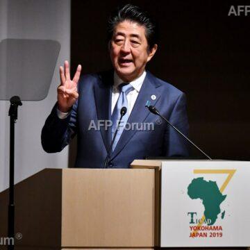 Afrique: Tokyo plaide pour des investissements «abordables»