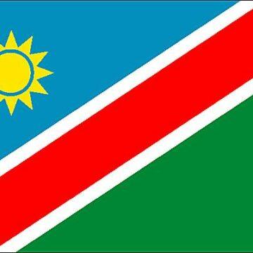 La Namibie après son 30ème anniversaire d'indépendance