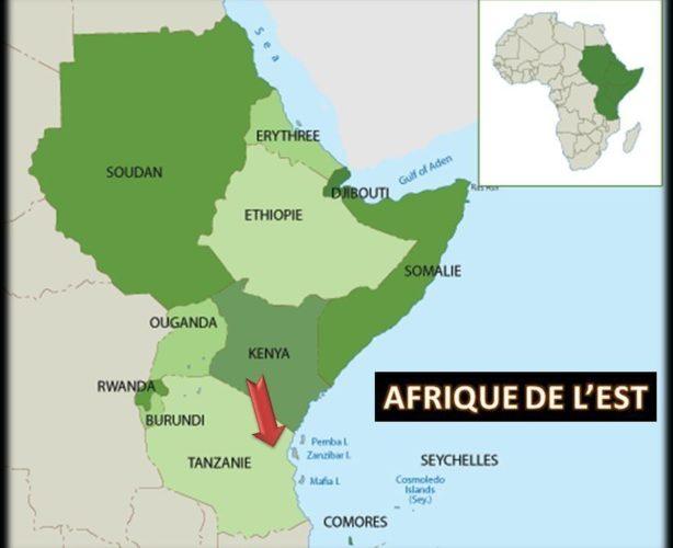 Afrique de l'Est : toute l'actualité en direct