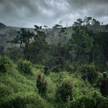RDC: deux civils tués et un garde blessé dans le Sud-Kivu
